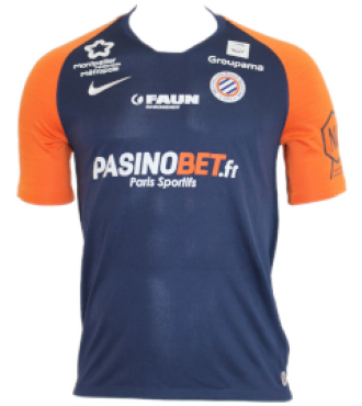 Maillot 2019 2020 DOM